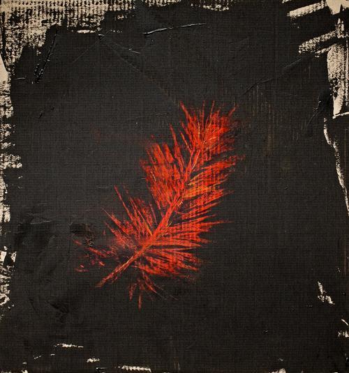 Redwinged+Blackbird+Man+Redwinged+BBM+cover