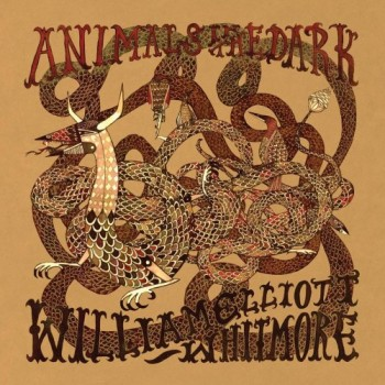 Animals+In+The+Dark+animalsinthedark